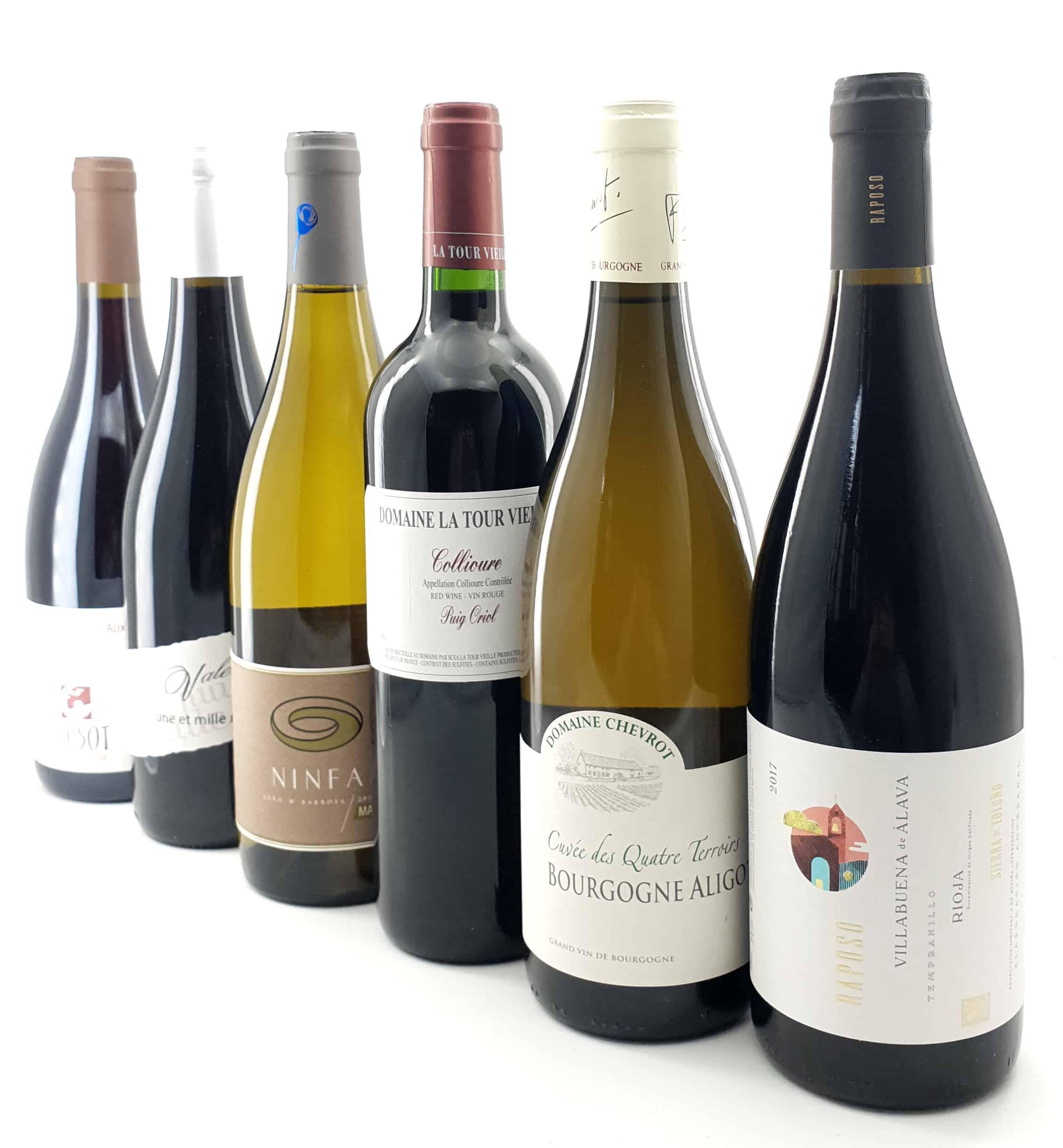 Probepaket Vorschau Perspektive Wein Teil I  Oktober 2019